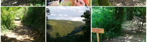 Bettona Crossing Trail ed Ultratrail: stiamo realizzando uno dei total trail più spettacolari ed affascinanti al mondo.